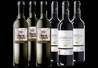 Gastronomisch Wijnpakket (Organic)