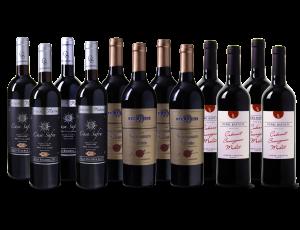 Wijnpakket Favorieten