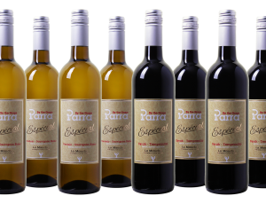 Parra By the Grape Especial Wijnpakket (Organic)